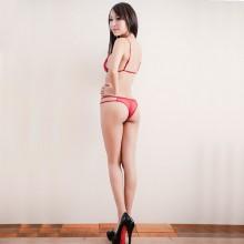 欧姿丽雅 高档精品刺绣蕾丝透明 三点文胸