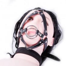 深喉口交马具型双圆口枷口塞 成人束缚调教